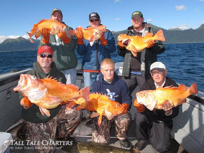 Alaska fishing trip photo galleries gallery home for Alaska fishing vacation packages